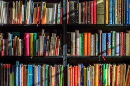 Feestelijke opening kinderboekenweek bij Bibliotheek Lemmer